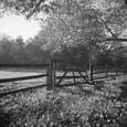 Gate by T. Brian Hager
