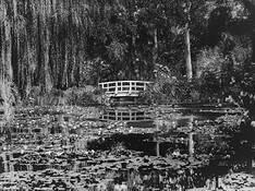 Monet's Garden by Massimo Badolato