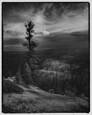 Bryce Canyon by James Reynolds