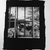 Window by Sandy Lloyd