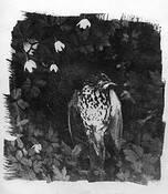 Nature Morte by Oysten Glenne Kristiansen