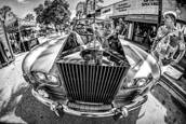 Rolls by Steven Greenbaum