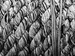 Rope by Rosemary Williams