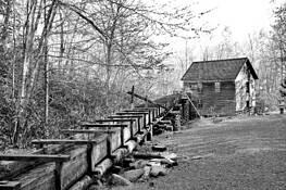 Old Mill by Brenda K. Phillips
