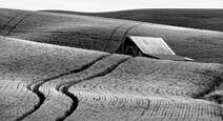 Palouse Field and Barn by Bob Neiman