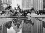 Reflection of Central Park by Emmanuel
