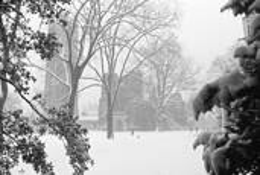 Early Snowfall by Walter Pinkus