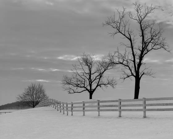 Sky meadows state park