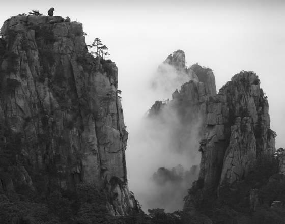 Morning mist 7