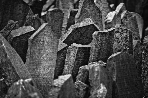 Old jewish cemetery 1
