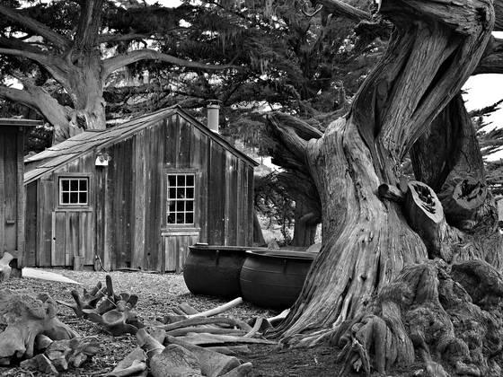 Whaler s cabin