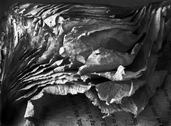 Ruffled pages