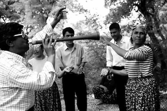 The roma festival
