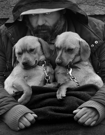 Man with puppies