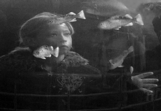 In the aquarium  5