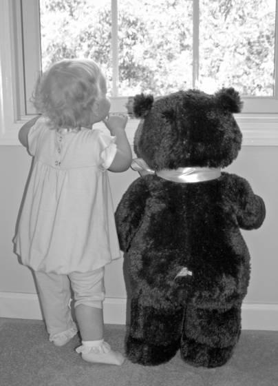 Look bear