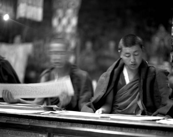 Monks reading