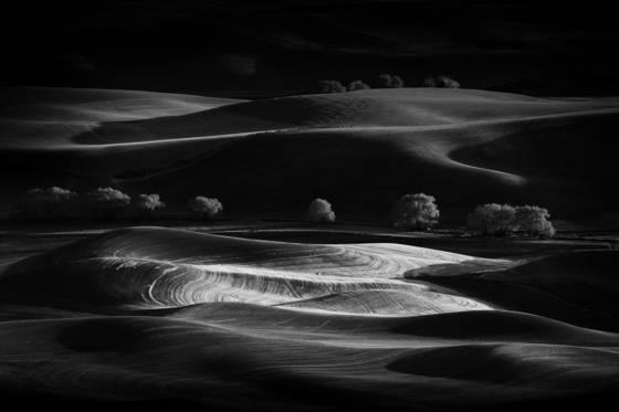 Shadowlands 2