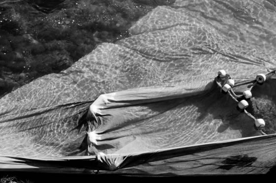 Eel nets