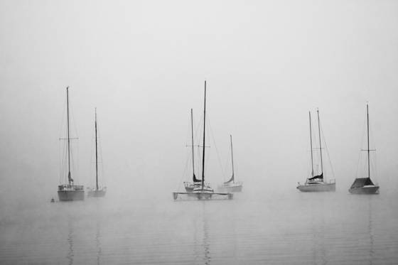 Anchored in the mist