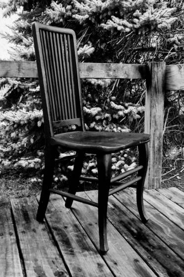 Chair with spruce tree