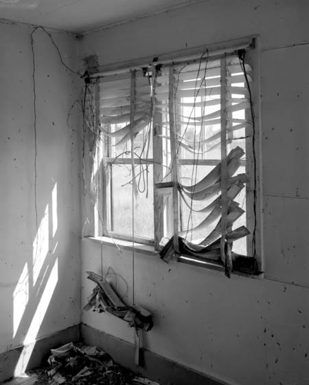 Tattered blinds
