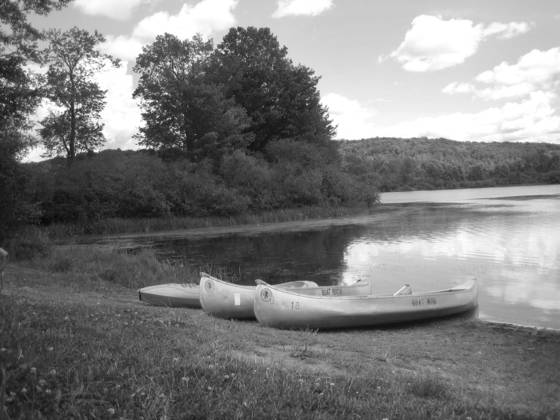 Summer at lackawanna state park