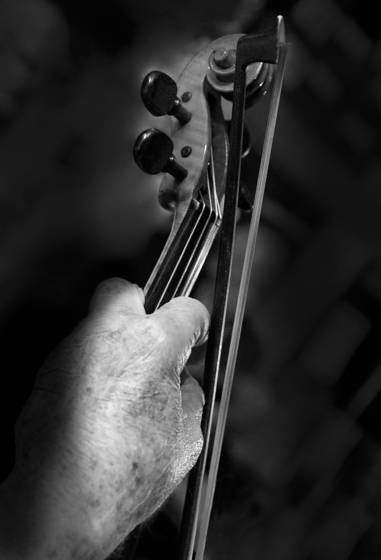 Old violinist eunice