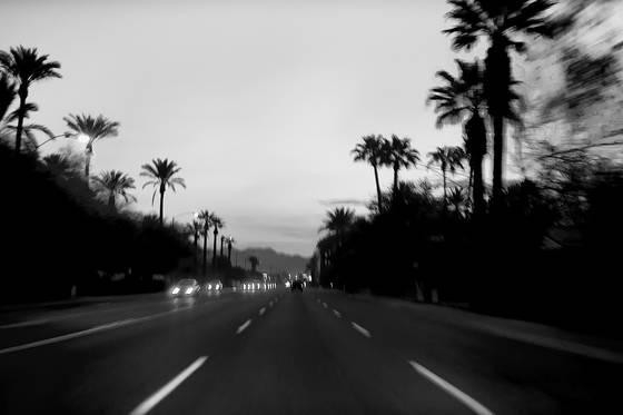 Headlights and palms