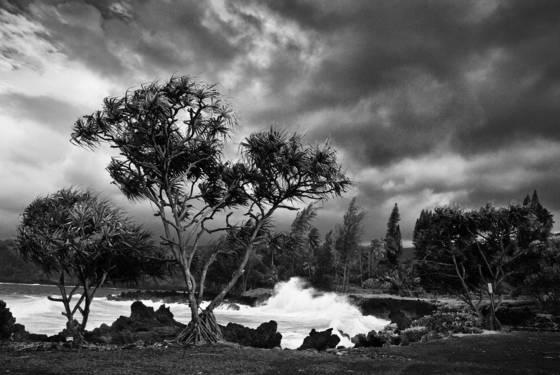 Hana storm