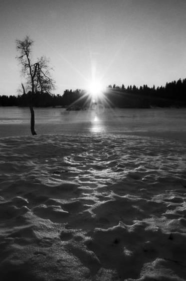 Frozen sun