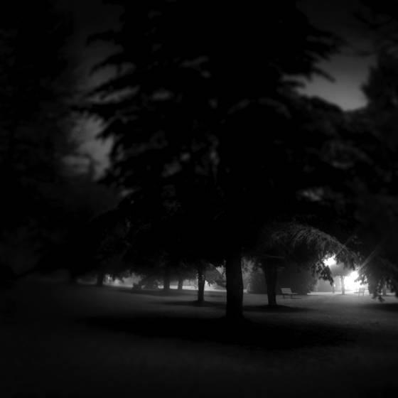 Winter three