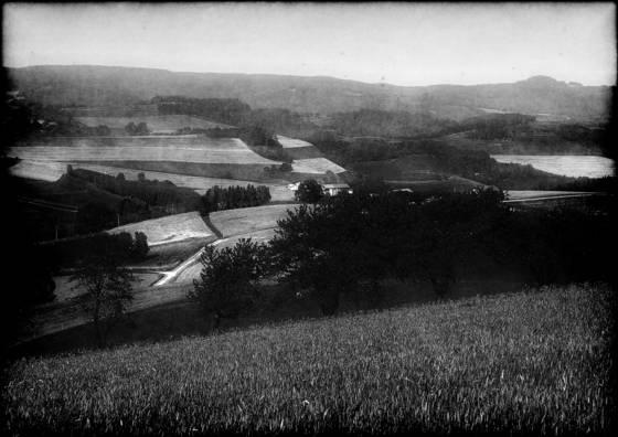 Smattering of bumpy fields