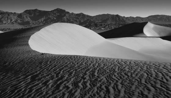 Dunes study 5