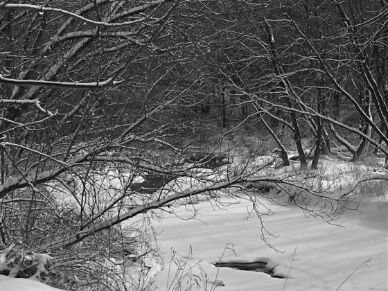 Rock run creek in winter 2