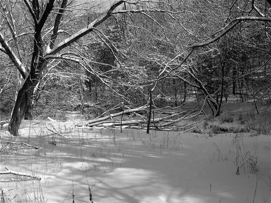 Rock run creek in winter 6