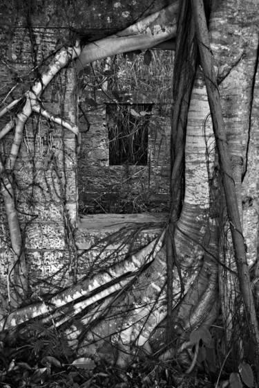 Mysterious portals 7