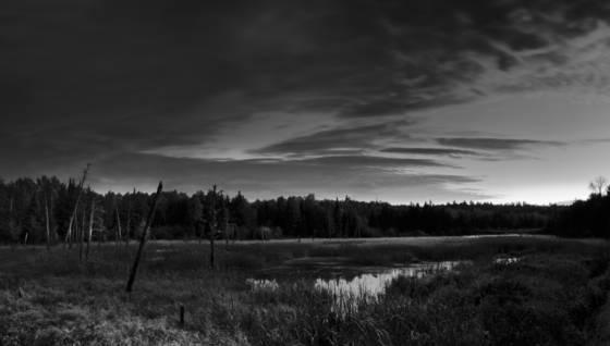 Moose river panorama