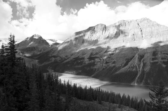 Peyto lake overlook