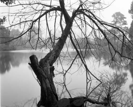 Stow lake 1