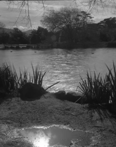 Stow lake 5