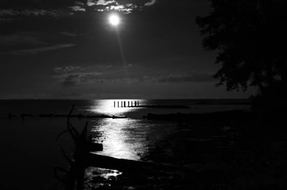Moonlight serenity 5