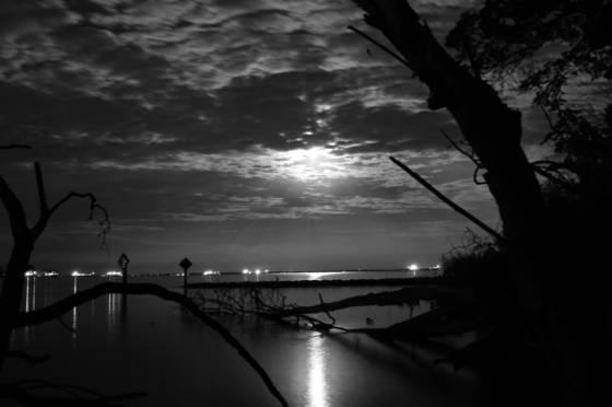 Moonlight serenity 7