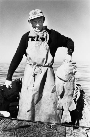 Rock cod fisherman