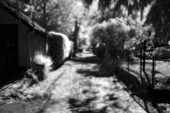 Ne portland alley