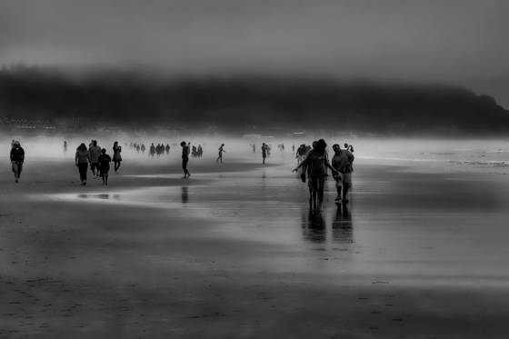 A walk in the mist 2