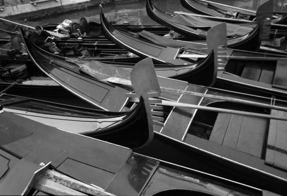 Venicei 11