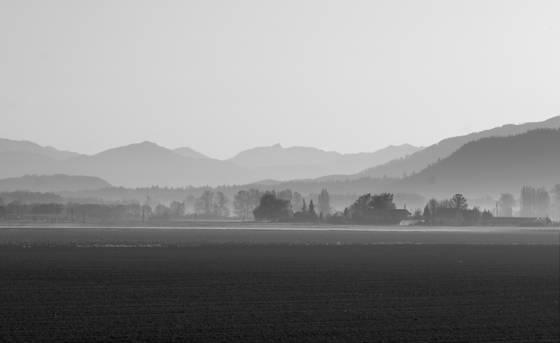 Nw farmland