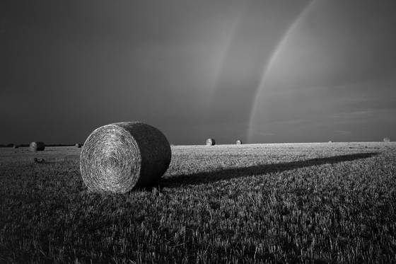 Round bales and rainbows