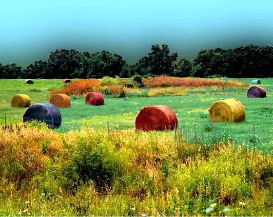 Grainstacks